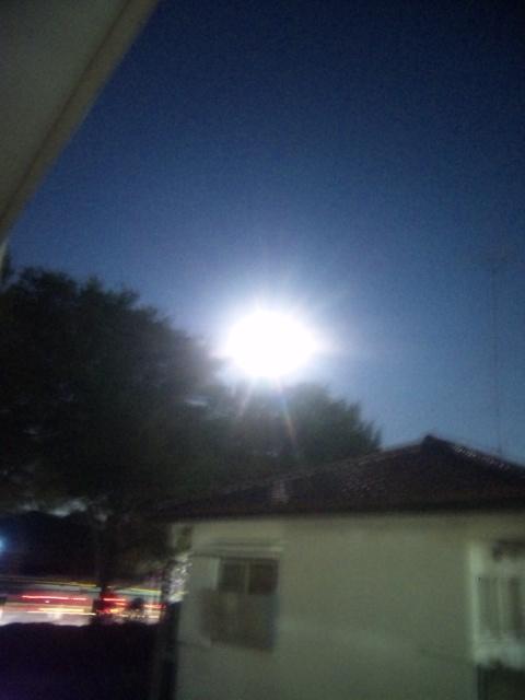 昨夜のお月様は綺麗でしたね!